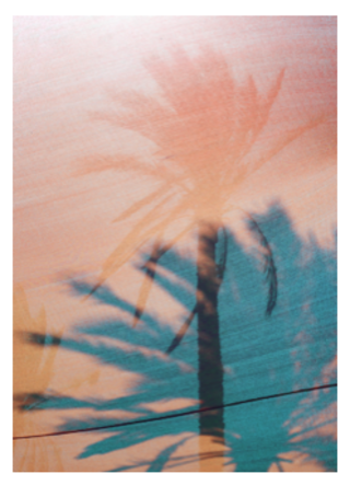 Trees. 70x100cm print on fabric. 380€. Edition of 5. (50% Off)